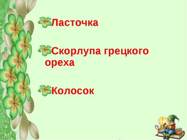 Ласточка Скорлупа грецкого ореха Колосок