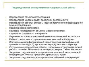 Индивидуальный план проведения исследовательской работы Определение объекта и