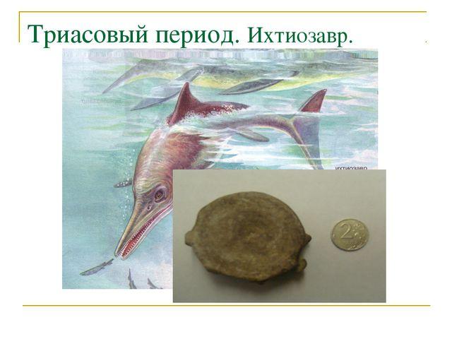 Триасовый период. Ихтиозавр.