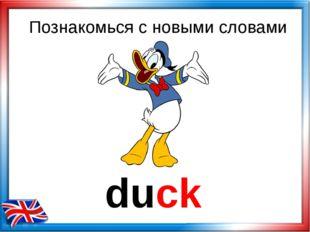 duck Познакомься с новыми словами