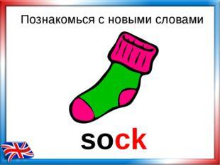 sock Познакомься с новыми словами