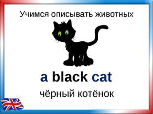 Учимся описывать животных a black cat чёрный котёнок