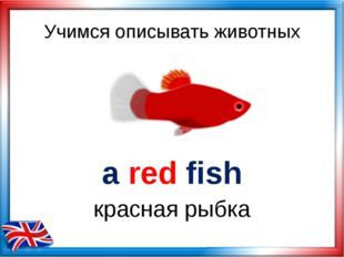 Учимся описывать животных a red fish красная рыбка