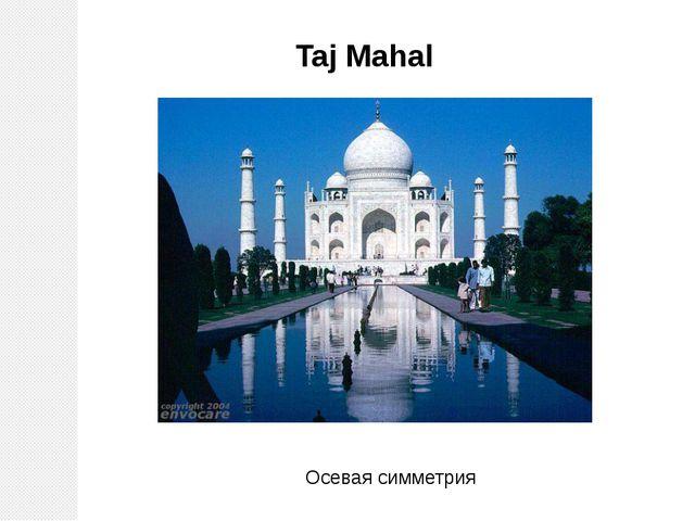 Taj Mahal Осевая симметрия
