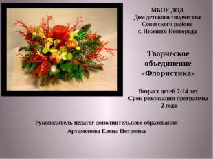 Руководитель педагог дополнительного образования Артамонова Елена Петровна МБ