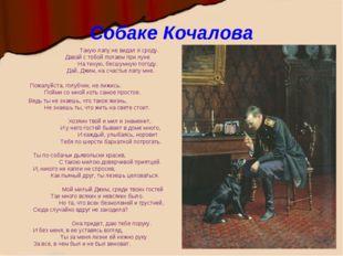 Собаке Кочалова Такую лапу не видал я сроду. Давай с тобой полаем при луне На