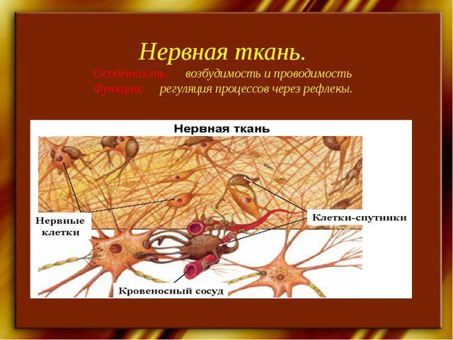 Нервная ткань. Особенность: возбудимость и проводимость Функции: регуляция пр...