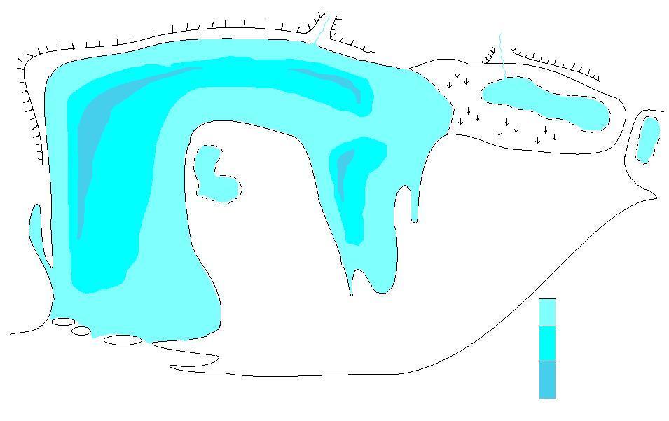 Копия озеро