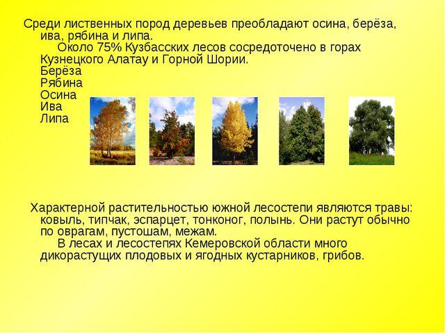 Среди лиственных пород деревьев преобладают осина, берёза, ива, рябина и липа...
