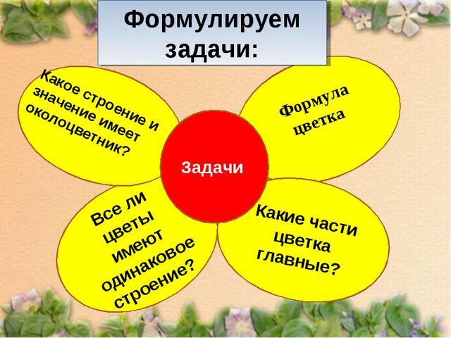 Формула цветка Все ли цветы имеют одинаковое строение? Формулируем задачи: К...