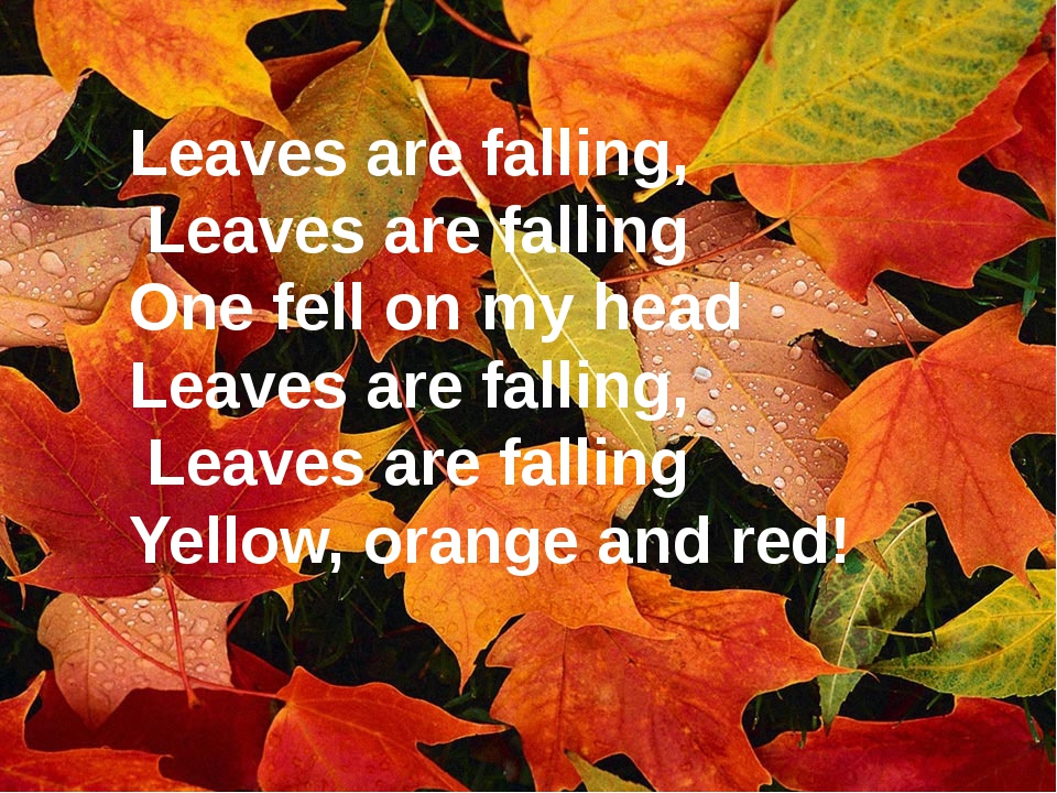 Leaves are falling, Leaves are falling One fell on my head Leaves are falling...