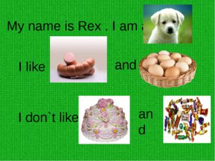 My name is Rex . I am a . I like and . I don`t like and