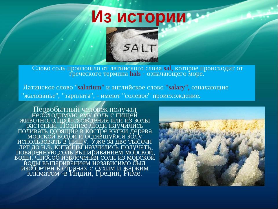 Из истории Первобытный человек получал необходимую ему соль с пищей животного...