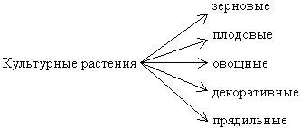 http://festival.1september.ru/articles/616681/img2.jpg