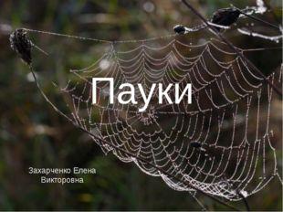 Пауки Захарченко Елена Викторовна