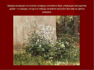 Шишкин возводил на холстах громады соснового бора, утверждал могущество дубов