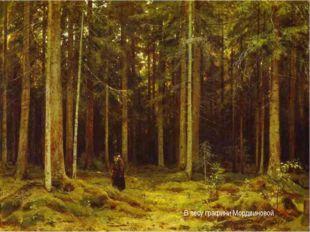 В лесу графини Мордвиновой