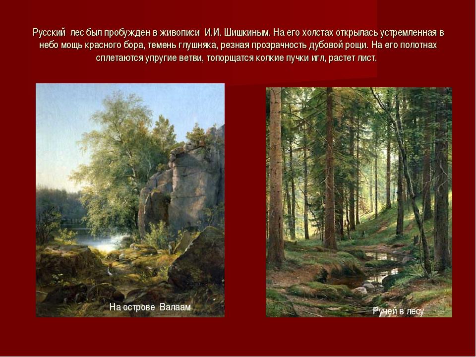 Русский лес был пробужден в живописи И.И. Шишкиным. На его холстах открылась...