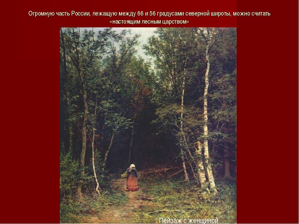 Огромную часть России, лежащую между 66 и 56 градусами северной широты, можно...