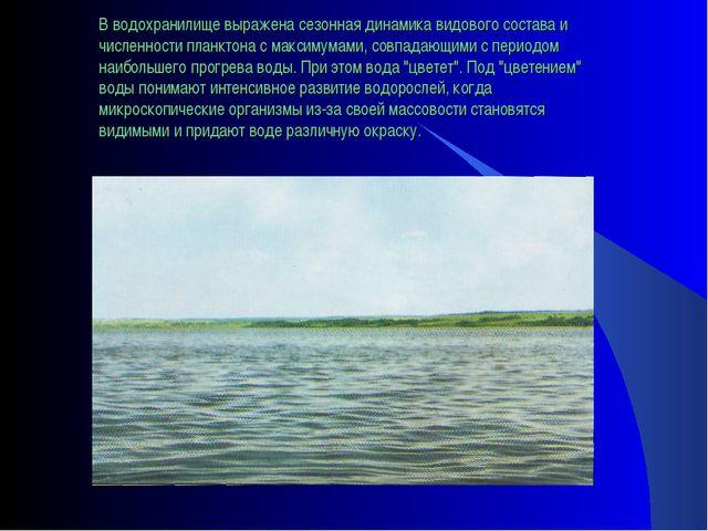 В водохранилище выражена сезонная динамика видового состава и численности пла...