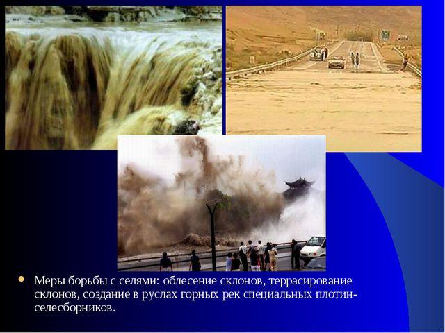 Меры борьбы с селями: облесение склонов, террасирование склонов, создание в р...