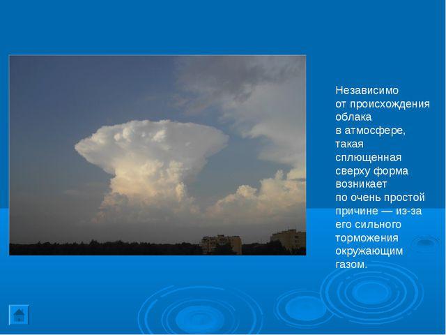 Независимо отпроисхождения облака ватмосфере, такая сплющенная сверху форма...