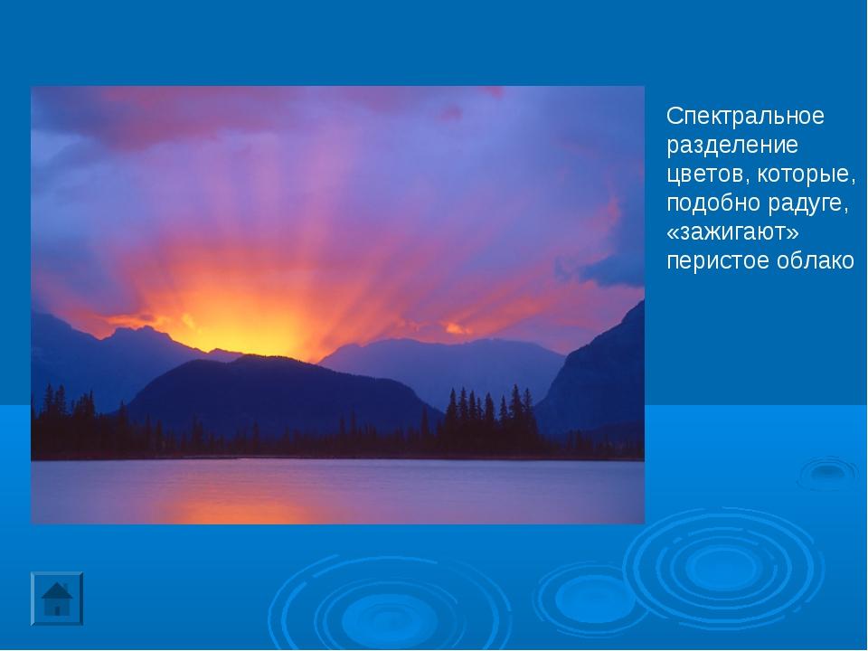 Спектральное разделение цветов, которые, подобно радуге, «зажигают» перистое...