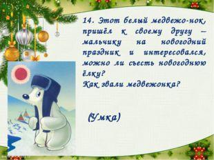 14. Этот белый медвежо-нок, пришёл к своему другу – мальчику на новогодний пр