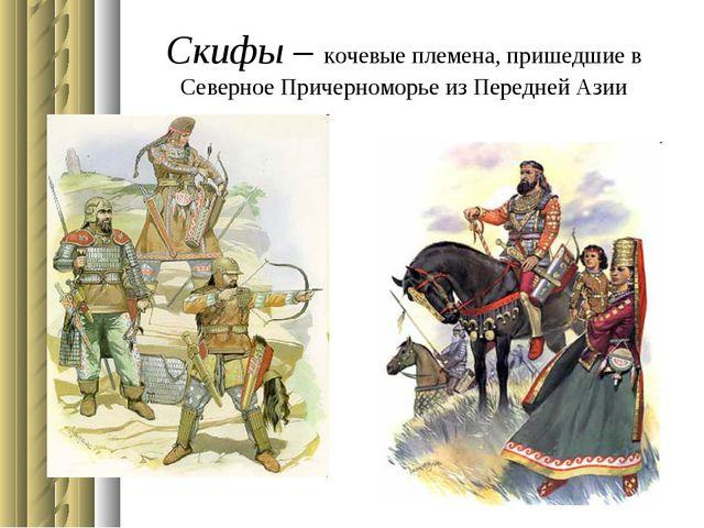 Скифы – кочевые племена, пришедшие в Северное Причерноморье из Передней Азии