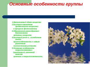 Основные особенности группы 1.Интенсивный обмен веществ; 2.Быстрое накопление