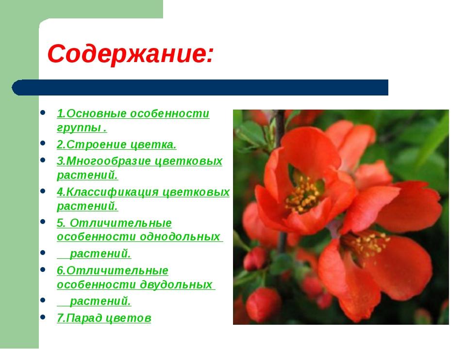 Содержание: 1.Основные особенности группы . 2.Строение цветка. 3.Многообразие...