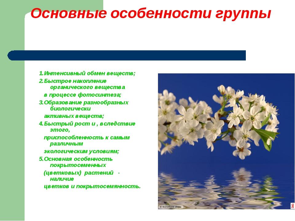 Основные особенности группы 1.Интенсивный обмен веществ; 2.Быстрое накопление...