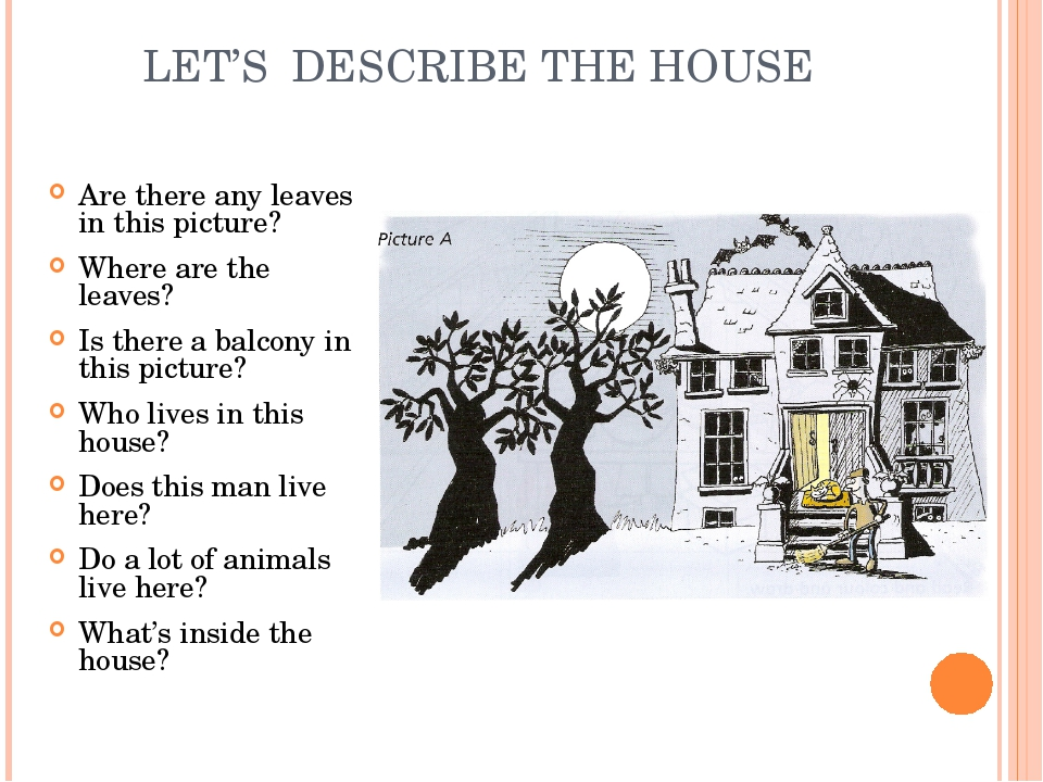 LET'S DESCRIBE THE HOUSE Are there any leaves in this picture? Where are the...