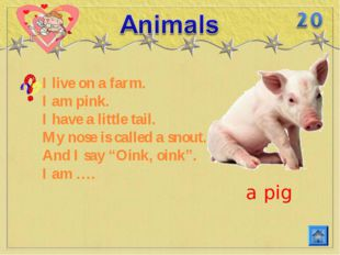 I live on a farm. I am pink. I have a little tail. My nose is called a snout.