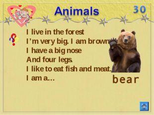 I live in the forest I'm very big. I am brown. I have a big nose And four leg