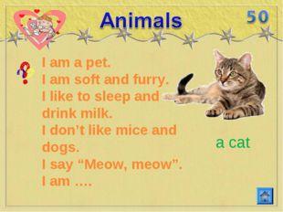 I am a pet. I am soft and furry. I like to sleep and drink milk. I don't like