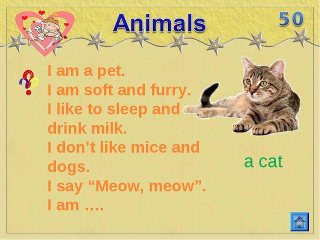 I am a pet. I am soft and furry. I like to sleep and drink milk. I don't like...