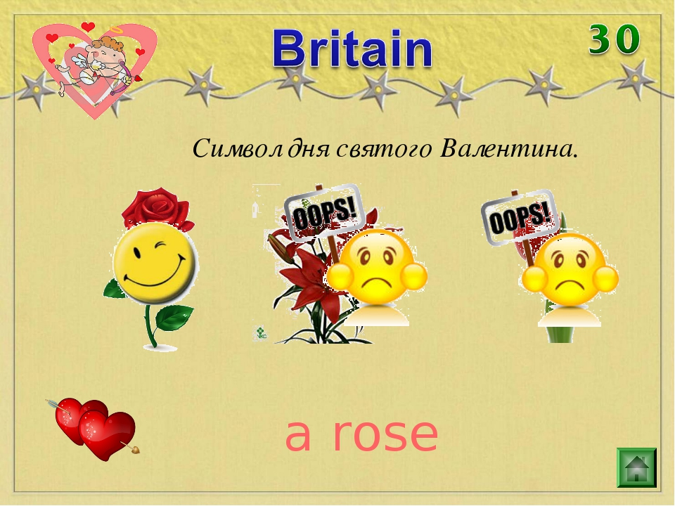 Символ дня святого Валентина. a rose