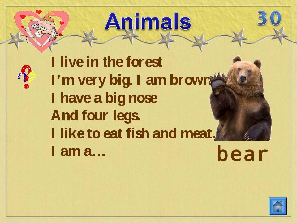 I live in the forest I'm very big. I am brown. I have a big nose And four leg...