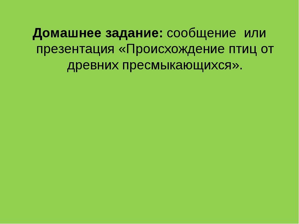 Домашнее задание: сообщение или презентация «Происхождение птиц от древних пр...