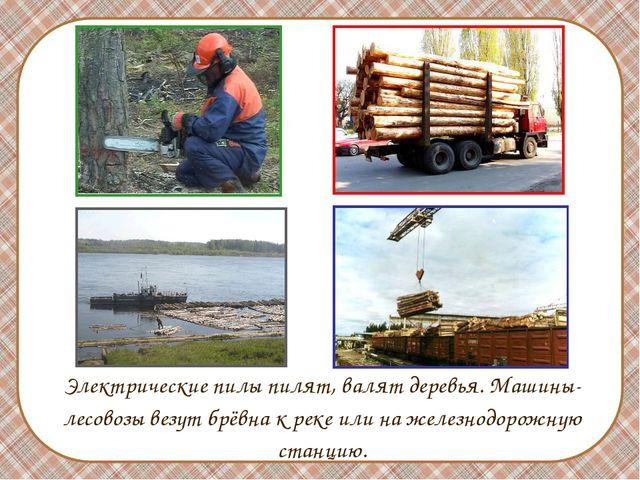 Электрические пилы пилят, валят деревья. Машины-лесовозы везут брёвна к реке...