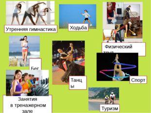 Туризм Ходьба Утренняя гимнастика Бег Физический труд Спорт Занятия в тренаже