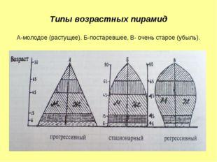 Типы возрастных пирамид А-молодое (растущее), Б-постаревшее, В- очень старое