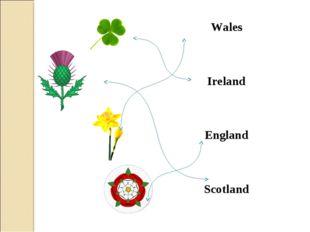Wales Ireland England Scotland
