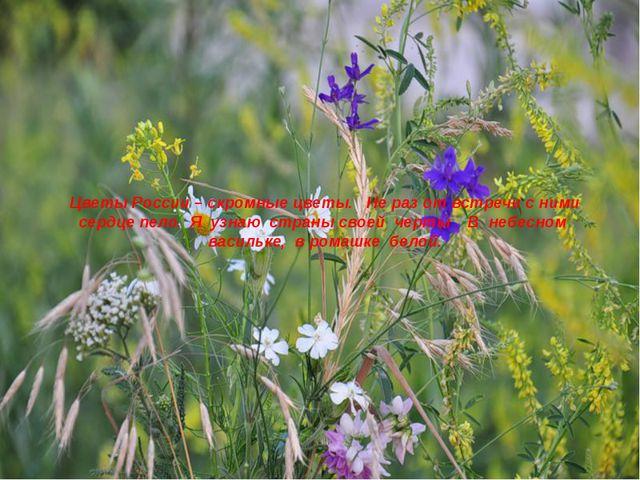 Цветы России – скромные цветы.Не раз от встречи с ними сердце пело.Я уз...