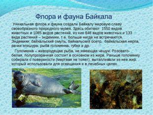 Уникальная флора и фауна создали Байкалу мировую славу своеобразного природн