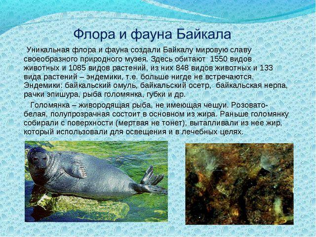 Уникальная флора и фауна создали Байкалу мировую славу своеобразного природн...