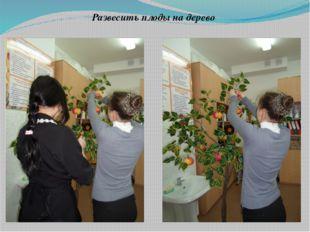 Развесить плоды на дерево