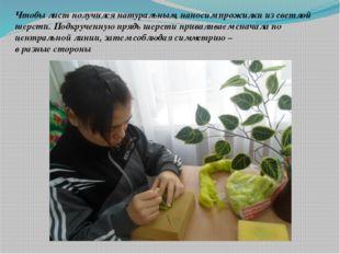Чтобы лист получился натуральным, наносим прожилки из светлой шерсти. Подкруч