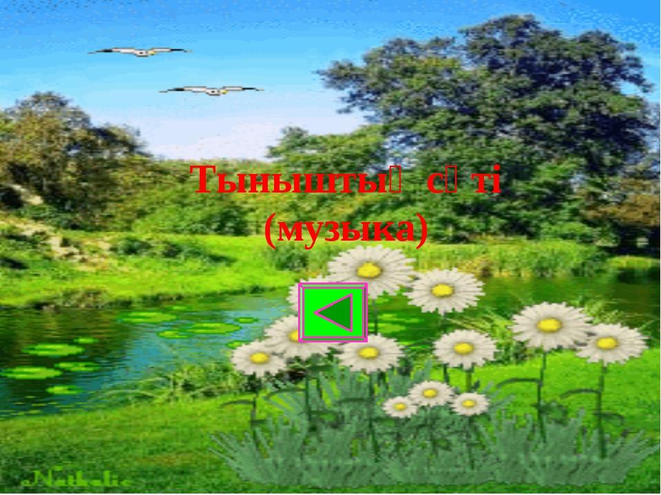 Тыныштық сәті (музыка)